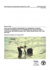 Cover Namibia workshop report_Page_01